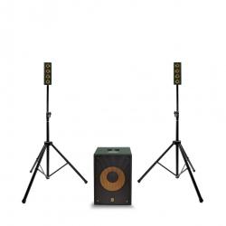 """MARKAUDIO ERGO SYSTEM 1S 121  - Système de sonorisation stéréo 1400W Peak - 1x subxoofer 12'' et 2x satellites 4x2"""""""