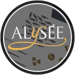 ALYSÉE Bouchon plastique pour flûte FL-511S/FL-511SC - 10 pièces