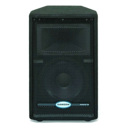 "SAMSON RS10 HD - Enceinte passive - 2 voies - woofer 10"" - 300W"