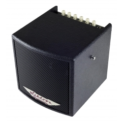 AMPLI ACOUSTIQUE ASHDOWN 45W