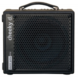 AMPLI GUITARE AER CHEEKY D.12
